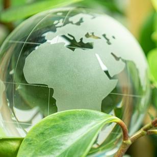 Programa de Sostenibilidad para Pymes