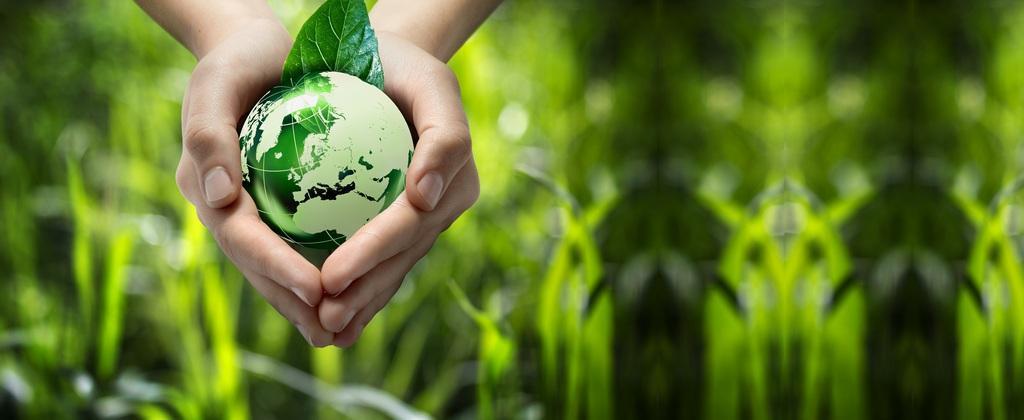 Apoyo a la ecoinnovación en Pymes