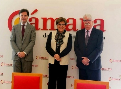 Constituida Comision Investigacion Innovacion Camara Espana