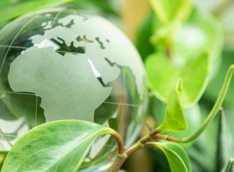 La Cámara de España ofrece ayudas directas a las pymes para mejorar su sostenibilidad